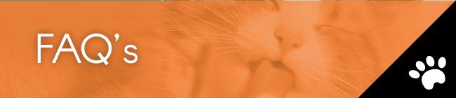 Catnip Enclosure FAQs