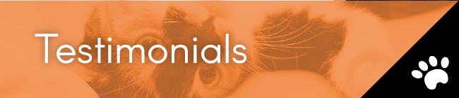 Catnip Enclosure Testimonials