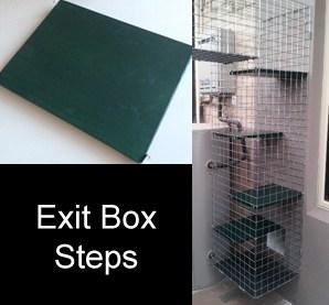 exit-box-steps