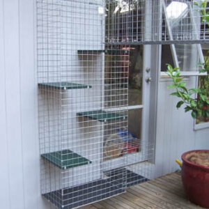 Exit Box Evans - Catnip Australia Cat Enclosures