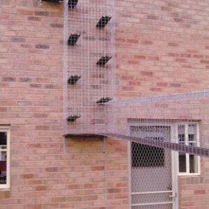 Exit Box from 2nd Floor - Catnip Australia Cat Enclosures