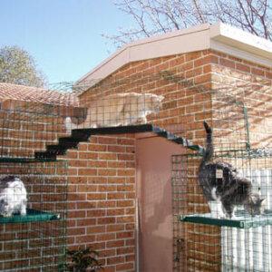 London Bridge Stepped Floor - Catnip Australia Cat Enclosures