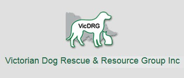victorian dog rescue and resource group inc Link Catnip Australia Cat Enclosures